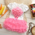 DRESS PINK ROSE 3D TUTU SZ 2-5T 4PCS = 296RB